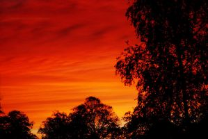 Red Sky in the Morning... by EarthHart