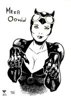 Catwoman by Guillomcool and Soul by guillomcool