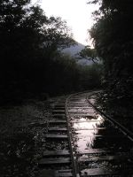 Morning Railway by AntiRetrovirus