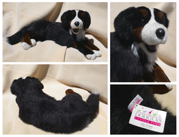 Douglas Cuddle Toys - Rory Bernese Mountain Dog by The-Toy-Chest