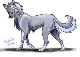 DarkKotaWolf - Prize Pic by Kaylink
