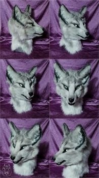 Aurora The Arctic Fox Complete by SBGothik