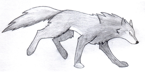 Shadow Wolf Sketch by ScarletRainxX