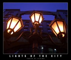 Lights of the City by vikingexposure