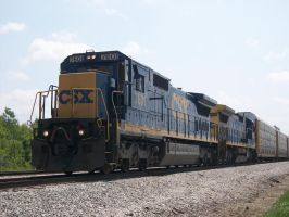 CSX C40-8'S by LDLAWRENCE