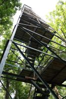 Fire Tower by MaryahDPhotography