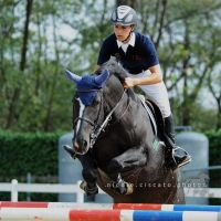 Showjumping III by firegold