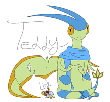 Teddy the Flygon and Link the Natu by caseVIRUS