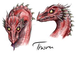 Thorn by PencilLover