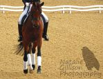 Laura Tomlinson and Dolcevendy O by NGillisonPhotography