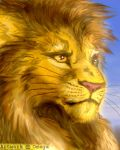 Aslan by OmegaLioness