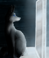 when will my reflection show who i am inside by KlonoaOfTheWind