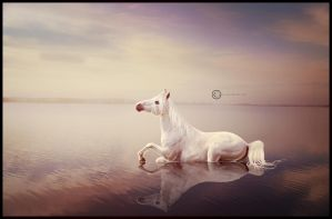 Lady of the Lake by Ryndell