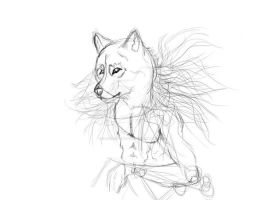 sketchy realistic wolf by Obscene-Oblivion