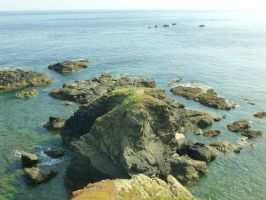 Lizard Point: View 19 by yaschaeffer