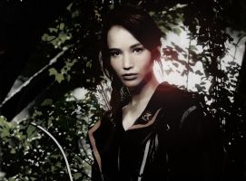 Katniss' photo manipulation by Loumee