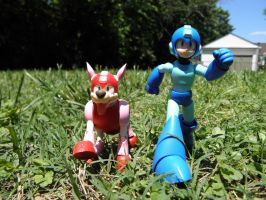 Megaman and Rush advenutures by RohnnyFive