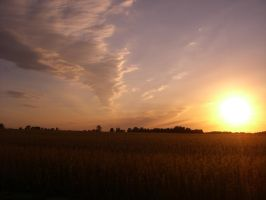 Sunset in Indiana by Equilis