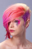 Goldwell Colourzoom Entry 2012 by piratepigeon