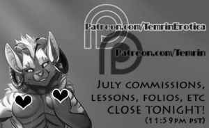 July Commissions CLOSE TONIGHT by Temrin