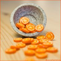 Orange slices -handmade- by eVolutionZ