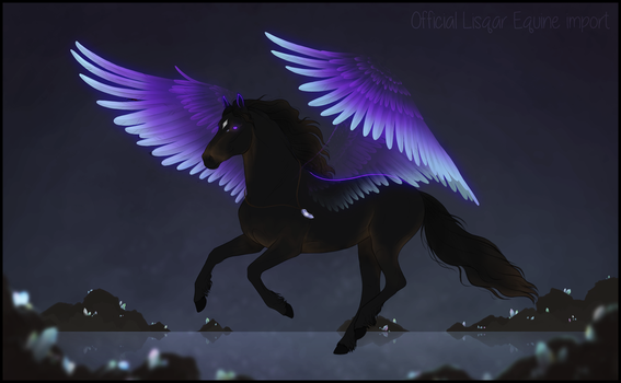 Friesian Lisqar import by Minthiy