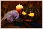 Halloween still by shatinn