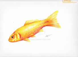 Lemon the Goldfish by Nala-l-Taiir