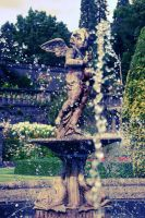 Fountain by Dgym