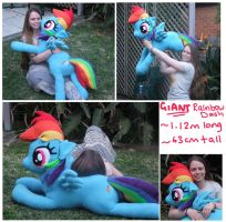 GIANT Rainbow Dash Plushie! by scilk
