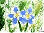 Columbines in Spring by jesus-in-a-can