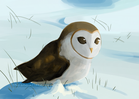 The Snowflake Owl by Snowflake-owl