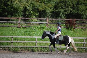 Cantering on Corky by folipoo