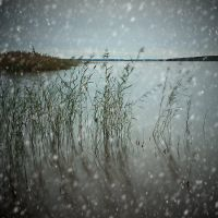 Winter by ChristineAmat