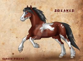Dreamer Reference by abosz007