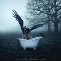 Birth Of Wings by flina