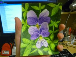 Mother's Day card - Pansies by qwerty1198