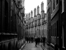 Cambridge V: Trinity Lane II by mdata