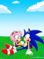 Sonic and Amy- Sweet Dreams by ihearrrtme