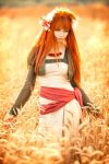 Horo in the Field by andrewhitc