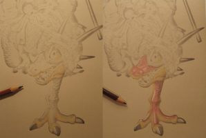 Progress for national DBZ competition by JessicaYin