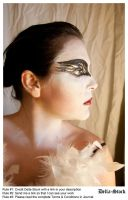 Black Swan FacePaint.11 by Della-Stock