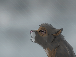 - Rhythm of the Rain - by Warrioratheart