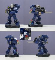Void Panthers plastic Sternguard Vet by Fenrisian-Wolf