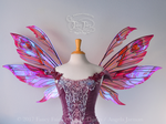 Aynia Iridescent Valentine Fairy Wings (sold) by FaeryAzarelle