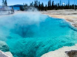 Yellowstone XI by adanielescu