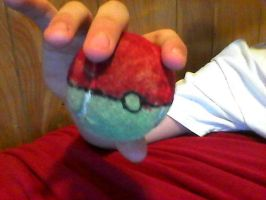 Tennis ball disguised as a Pokeball. by Tigereagle