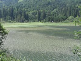 Montain Lake with little House and Forest Stock by AngelSTOCK22