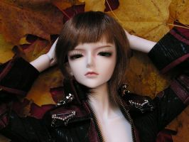 Autumn leaves 1 by chiriann