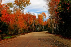 Northern Michigan Autumn 4 by S-H-Photography